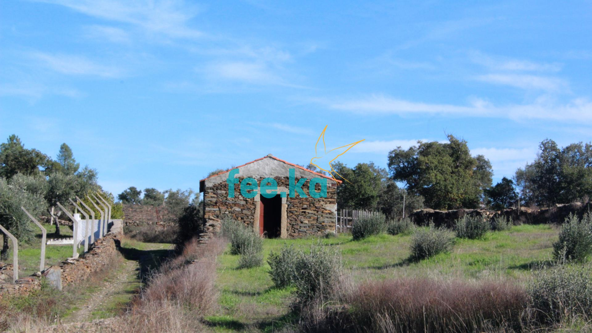 Quinta em Juncal do Campo  - Castelo Branco, União Das Freguesias De Freixial E Juncal Do Campo
