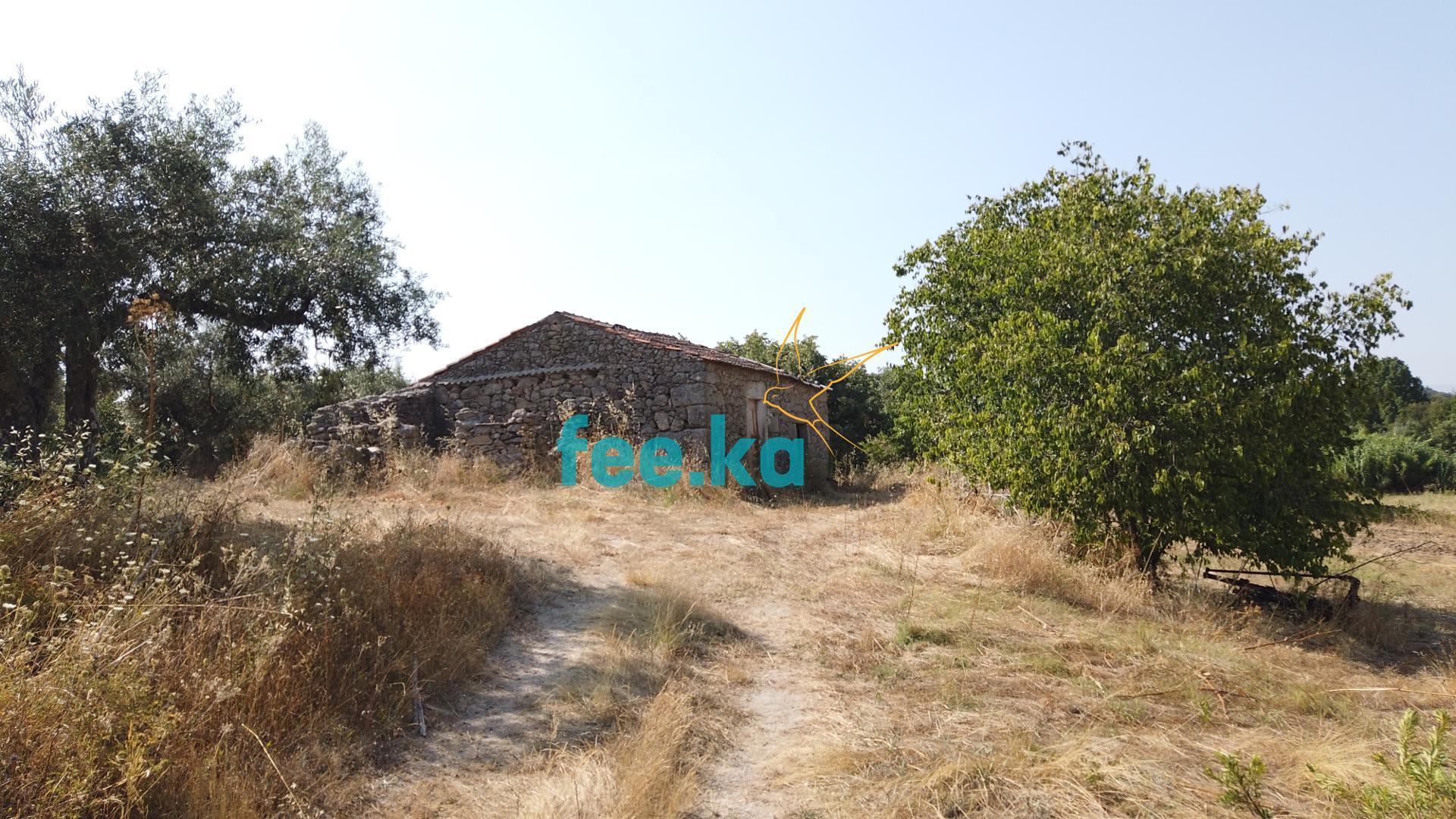 Terreno Agrícola  - Castelo Branco, Castelo Branco